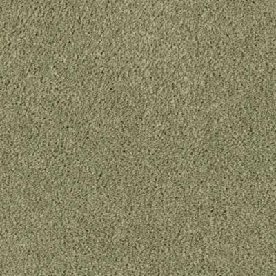 Westwind Bay Carpet And Flooring Distributors Serving